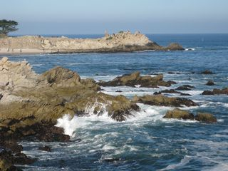 Pacific Grove cottage photo - Asilomar Beach - Explore tide pools at low tide