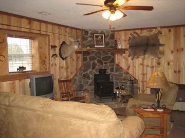 Mountain View cabin rental - Living Area