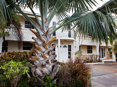 Atlantic Shores apartment rental - A beautiful bismarck palm sits majestically at the front of the property.
