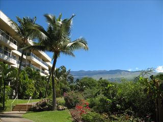 Kihei condo photo - Maui Banyan Complex with View of Owner's Unit from Outside