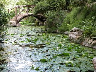 Austin house photo - The Zilker Botanical Garden - located 1 miles away from the rental