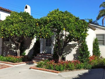 Santa Barbara house rental - The sunny, spacious backyard is perfect for outdoor living.