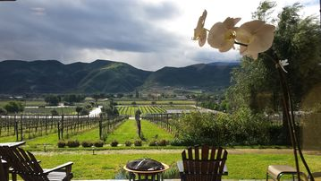 Temecula estate rental - View from Kitchen window