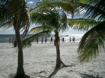 Enjoy the water, sand and warm sun on the beaches of Ft Myers and Sanibel
