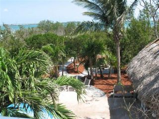 Summerland Key house photo - Your tropical oasis!