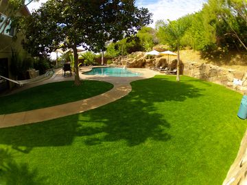 LARGE BACKYARD