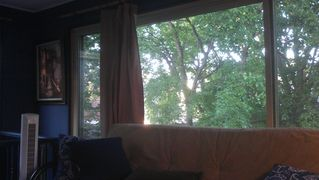 Minneapolis condo photo - The Tree House Aspect...