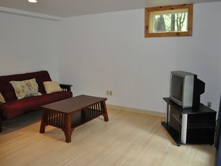 Downstairs Living Room - Lake Placid house vacation rental photo