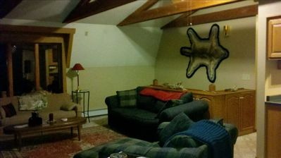Duluth cabin rental - Cozy living room with gas fireplace.