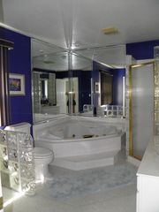 Osage Beach house photo - Master Bath with shower and whirpool tub.