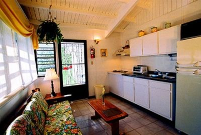 Typical living-kitchen area of the 1-BR apartment