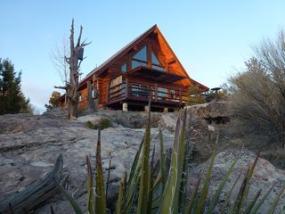 It's spring, Mountain Bluebirds are starting to show up. Hummingbirds next! - Mesa Verde cabin vacation rental photo