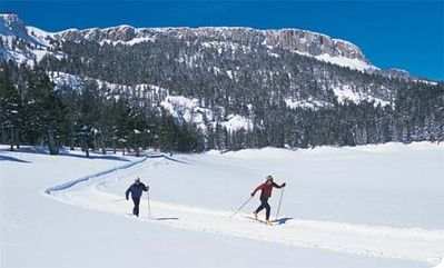 Cross country skiing at Tamarack. Trails for beginners and experts!