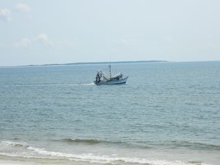 Mexico Beach house photo - Shrimp Boat cruising by