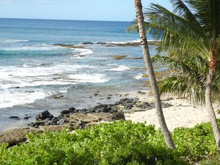 Makaha studio photo - We have 2 natural ponds out front on the sandy beach!