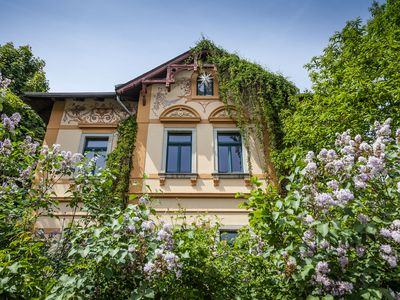 Holiday apartment in a stylish villa on the Radebeul vineyards