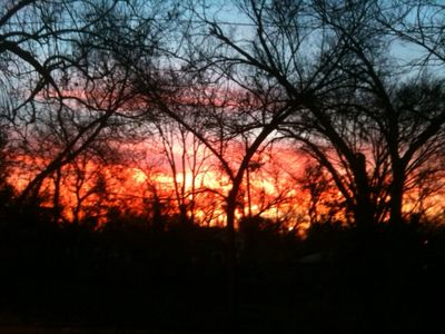 Sunrise, 1/11/2013. Taken from front door.