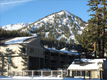 Mammoth Lakes condo rental - View from our front door