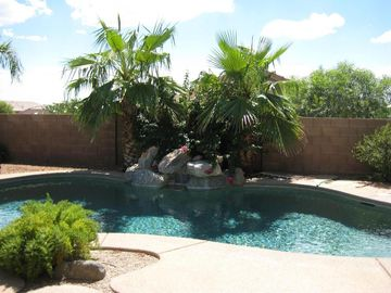 Tucson house rental - Sparkling pool