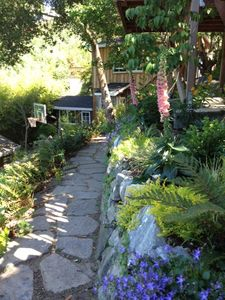 Mill Valley studio rental - Stone path in garden