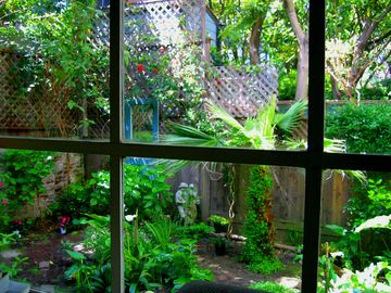 San Francisco apartment rental - Garden