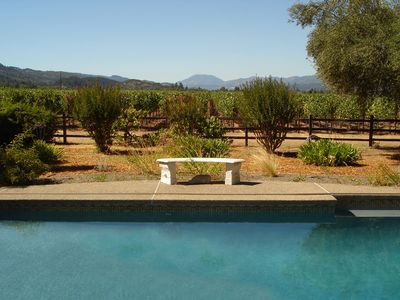 View from the lawn of To-Kalon Vineyards. Mount St. Helena is in the distance.