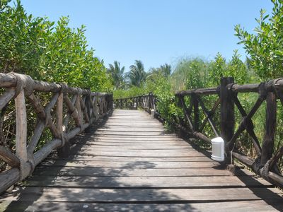 Cozumel condo rental - Incredibly beautiful walkway through the property