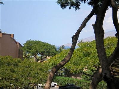 Kihei condo rental - garden view, with peek-a-boo ocean view