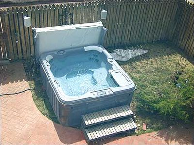 Large Hot Tub in Back Yard