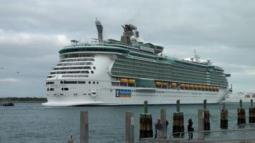Cruise Ships arrive and depart from Port Canaveral daily.