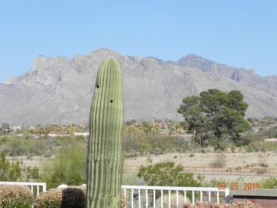 View of Catalina Mountains from the patio. Walking path on other side of wall.