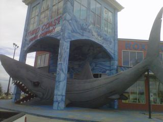 Cool shark entrance into one of the gift shops close by. Kids love it, fun!! - Corpus Christi condo vacation rental photo
