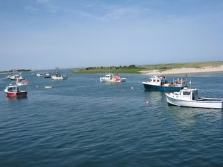 Brewster house photo - Visit the Fish Pier at Picturesque Chatham Harbor.
