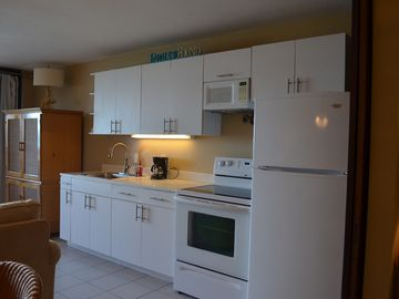 Fully equipped kitchen with brand new stove and refrigerator!
