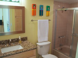 Redington Shores condo photo - Guest bath.