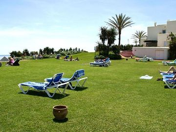 Grass area by Beach