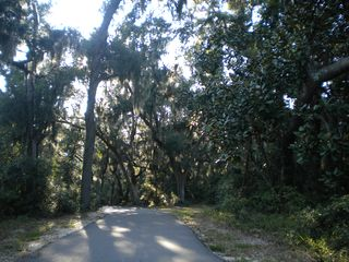 Gulf Shores condo photo - Gulf States Park bike trail - a beautiful ride