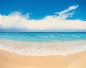 Your Pure Sand  Beach, ready to relax and enjoy