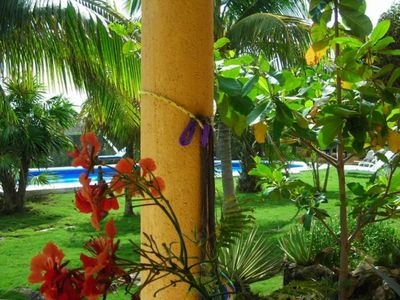The gardens at Playa del Secreto ,The beautiful pool as seen from your patio.