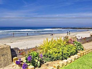 Oceanside condo photo - The Beautiful Grounds - Beach Front Of NCV