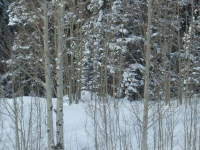 Ouray condo rental - Cross country ski, snowshoe and ice climb or stay