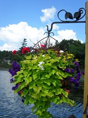 Thousand Islands cabin photo - Dockside