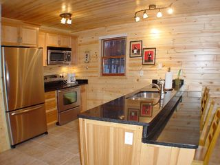 Crystal Mountain, Thompsonville cabin photo - Recently remodeled and fully-stocked kitchen offers all the amenities you need.