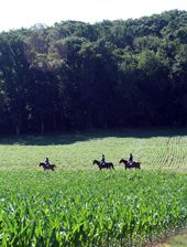 Shenandoah farmhouse rental - Trail ride on vacation!