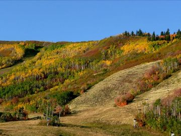 View of Park City Mountain Resort in Autumn
