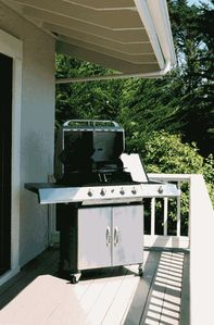 3 Burner Gourmet Gas Grill with Side Warming Burner