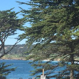 Carmel cottage rental - The view from in front