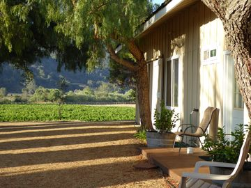 Santa Ynez barn rental - Entrance to apartment with vineyard in the background