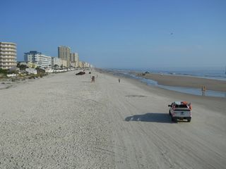 Daytona Beach house photo - Beach of Hard Packed Sand welcoming runners, walkers and driving.