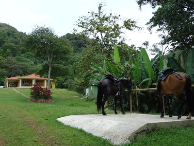 Utuado house rental - To enjoy a horse riding